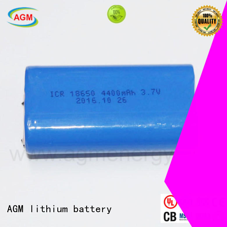 AGM lithium battery agm e bike battery with charger for laptop