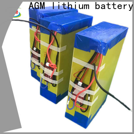 AGM lithium battery e bike battery with charger for sale