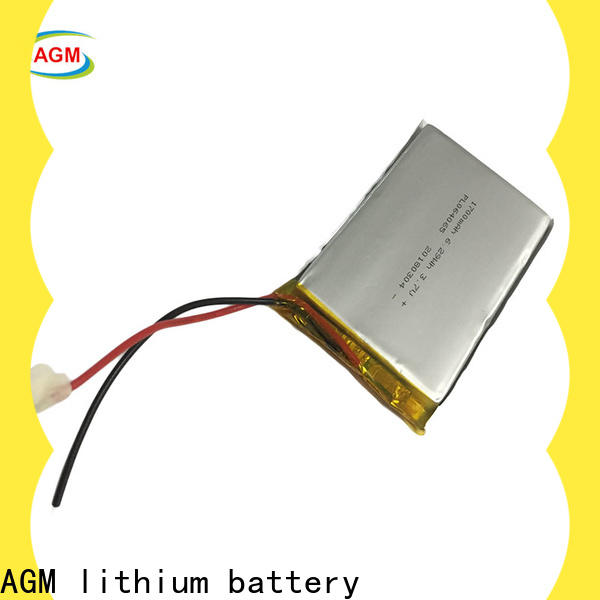 AGM lithium battery lithium polymer battery company for phone battery