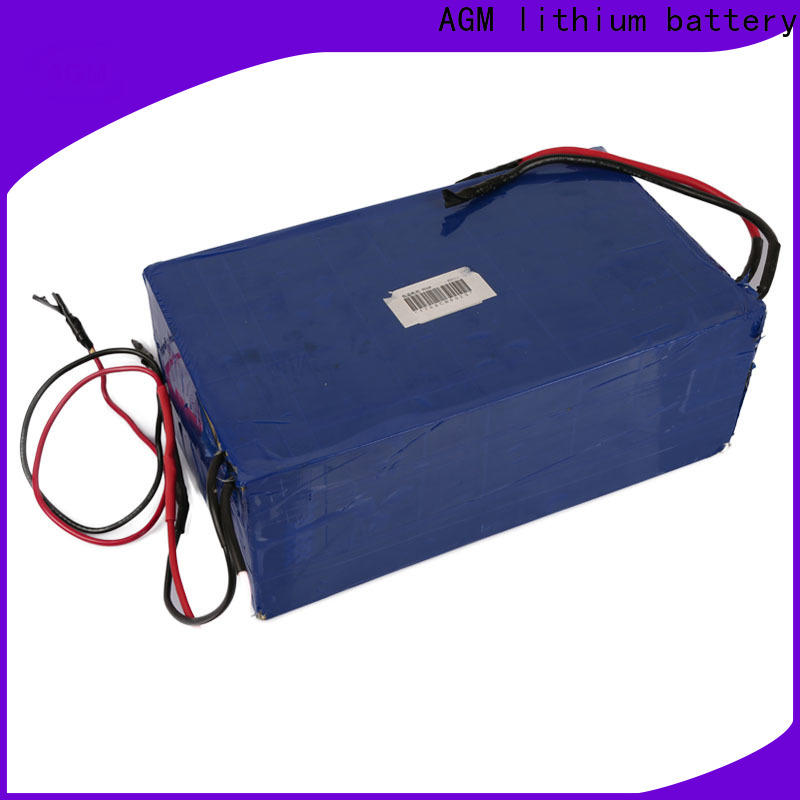 AGM lithium battery lifepo battery manufacturers for e scooter