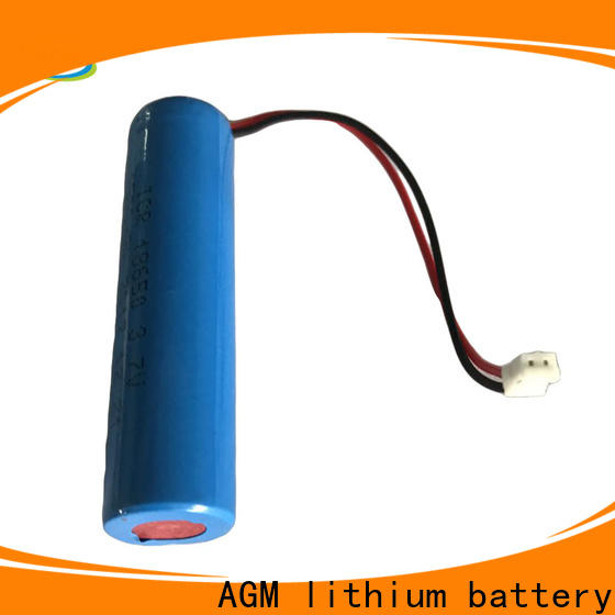 AGM lithium battery 18650 lithium battery with charger for solar products