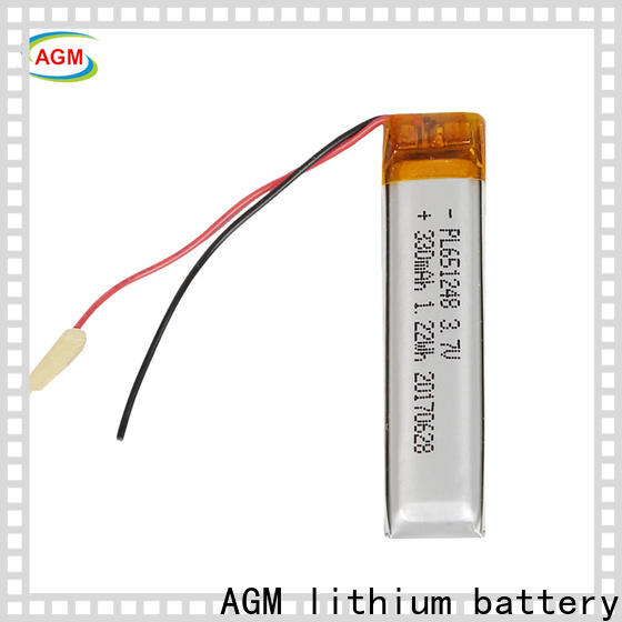 AGM lithium battery new polymer battery with charger for pad