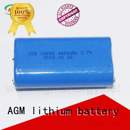 oem 12v lithium ion battery pack with charger AGM lithium battery