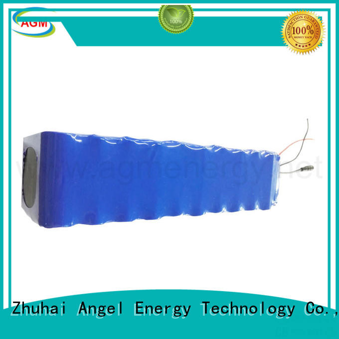 AGM lithium battery li ion battery pack with charger