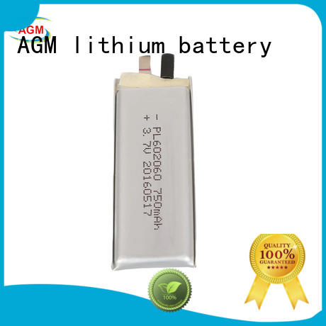 lithium polymer battery online for gps