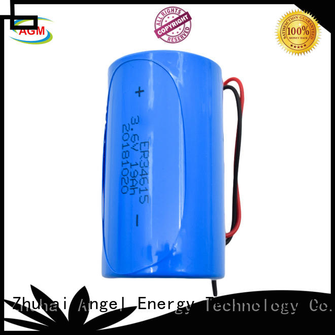 AGM lithium battery er14250 supplier for alarm or security system
