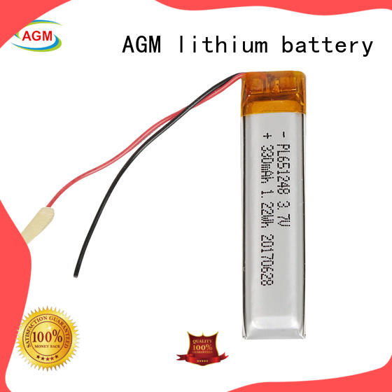AGM lithium battery rechargeable polymer battery agm for gps