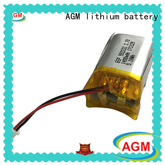 professional lithium polymer battery mobile phones agm for phone battery AGM lithium battery