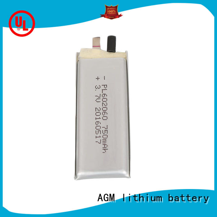 AGM lithium battery lithium polymer battery supplier for pad