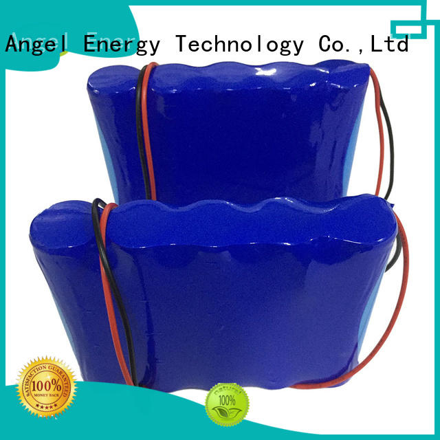 AGM lithium battery custom li ion battery pack company for e tools