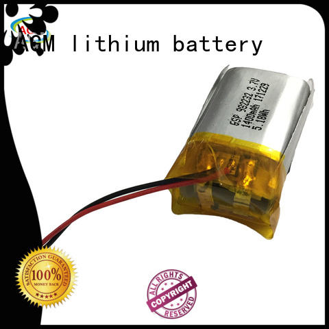 AGM lithium battery agm polymer battery with charger for gps