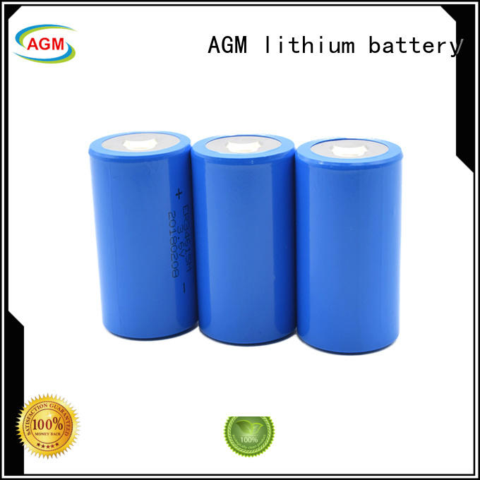 AGM lithium battery non rechargeable dd battery agm for professional electronics