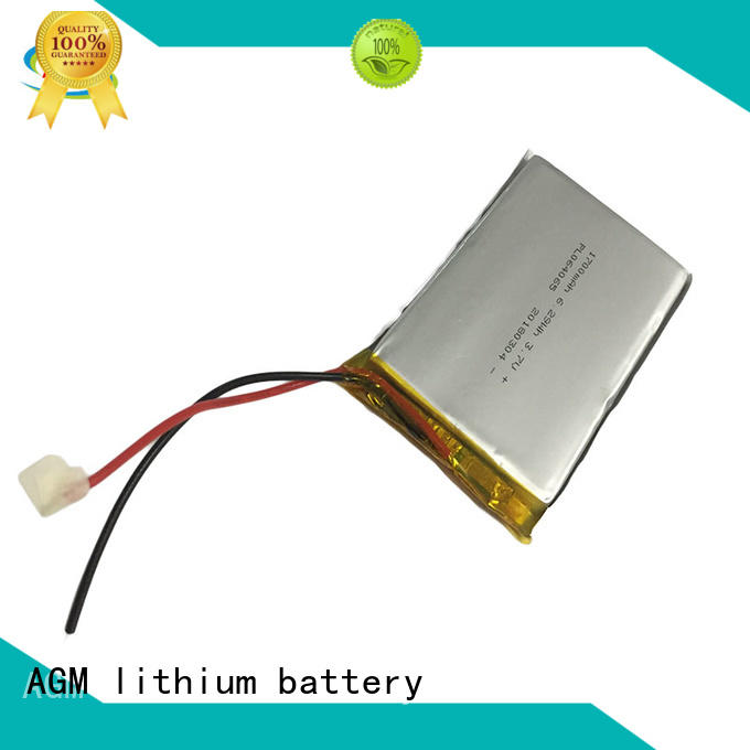 AGM lithium battery professional lithium polymer battery online for pad