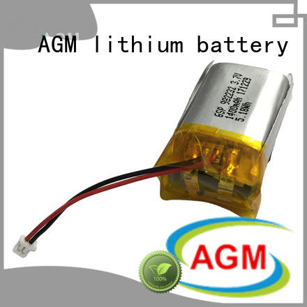 AGM lithium battery mah rc lipo batteries with charger for pad