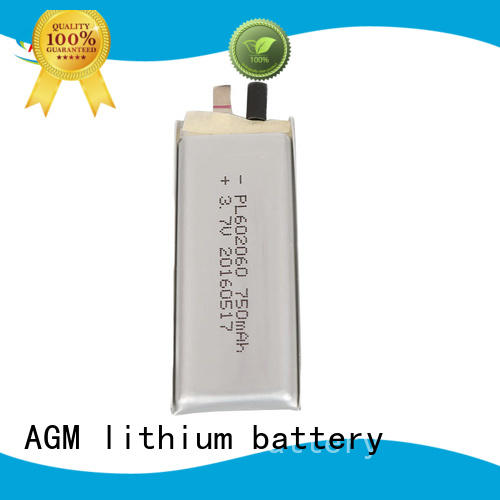 AGM lithium battery mah 3s lipo battery with pcb for gps