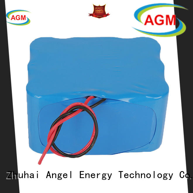 AGM lithium battery e bike battery company for laptop