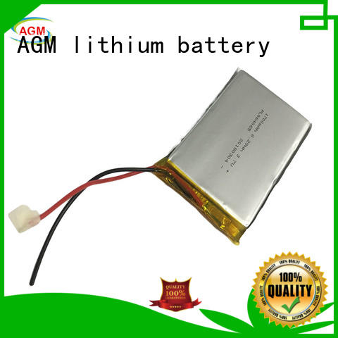 odm lithium polymer battery pack with pcb for pad AGM lithium battery