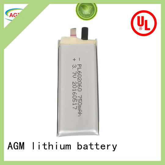oem rechargeable lithium polymer battery with charger for phone battery