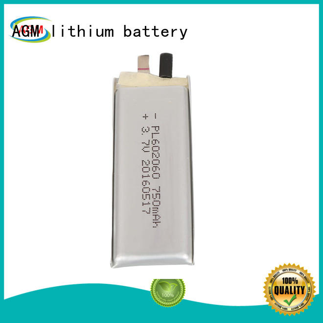 professional lithium polymer battery manufacturer with pcb for gps AGM lithium battery