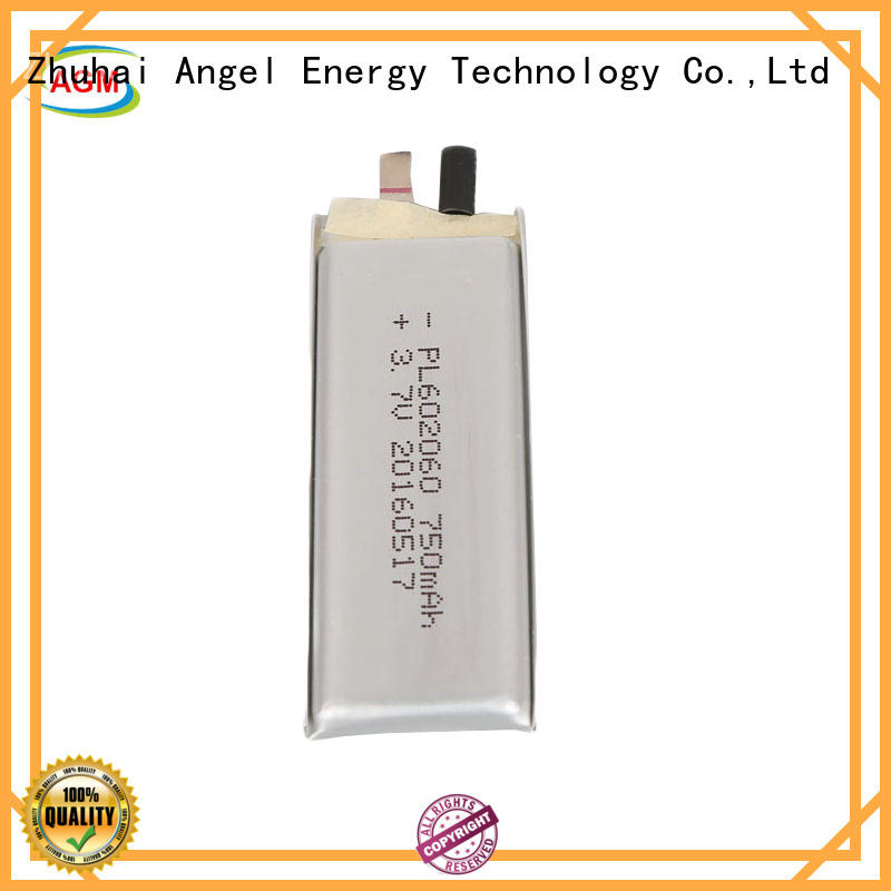 AGM lithium battery polymer battery manufacturers for gps