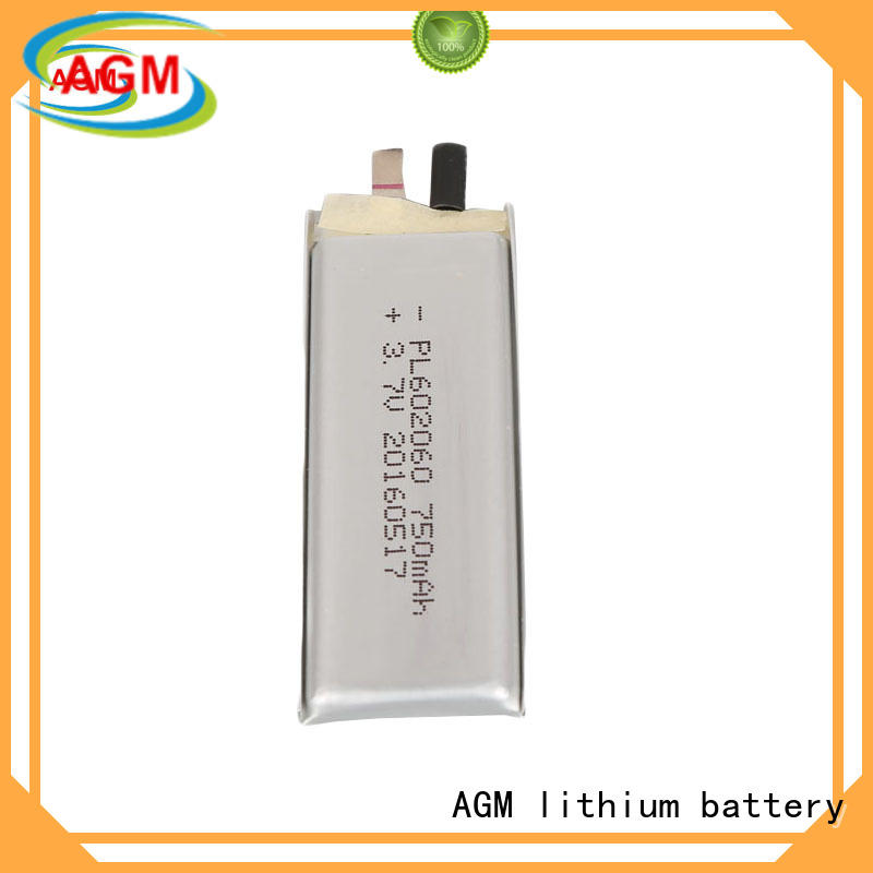 bluetooth lithium polymer battery manufacturer with charger for gps AGM lithium battery