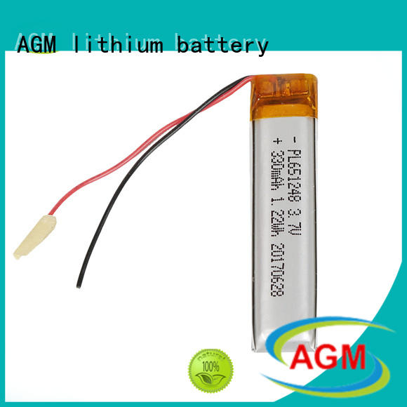 AGM lithium battery rechargeable polymer battery with charger for gps