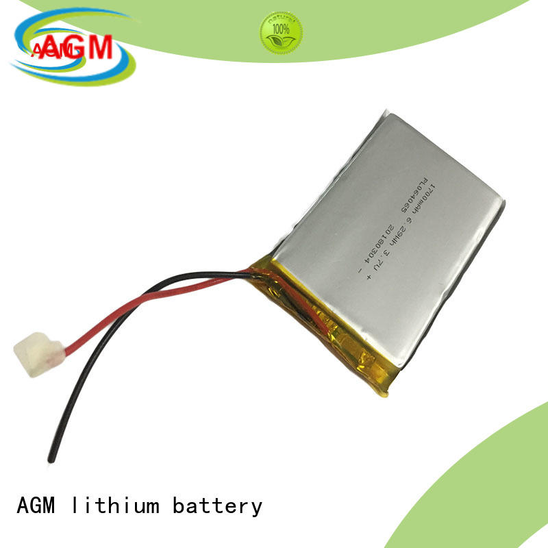 AGM lithium battery polymer battery with charger for pad