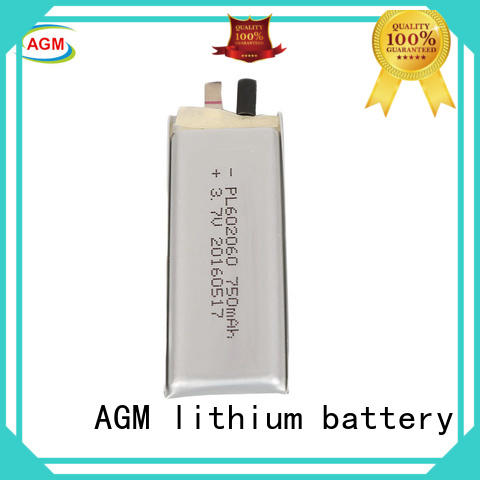 lithium capacity AGM lithium battery Brand 1 lithium polymer batteries factory