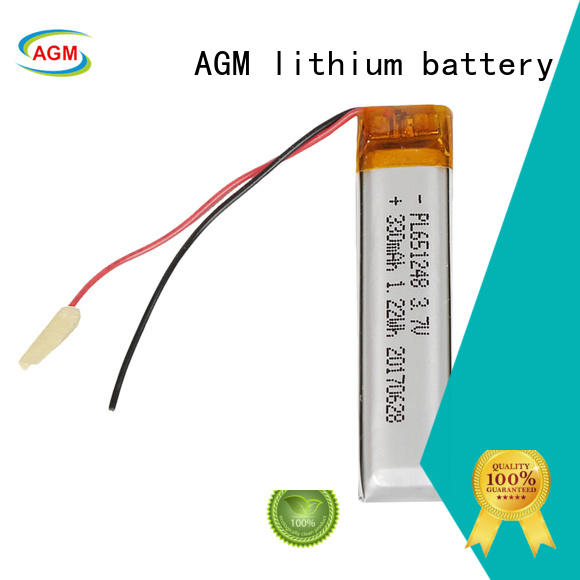 AGM lithium battery custom polymer battery with charger for phone battery
